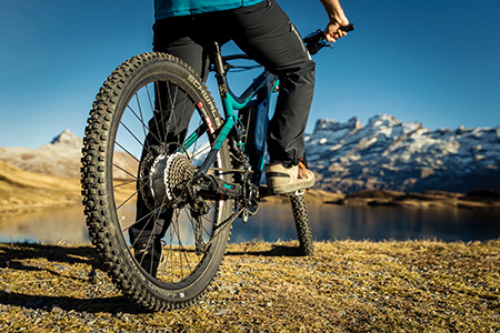 maxon has founded a business unit under the name MARS (Maxon Advanced Robotics & Systems), which focuses exclusively on the development and production of mechatronic drive systems